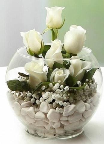 Beyaz Mutluluk 9 beyaz gül fanusta  Bolu çiçek siparişi sitesi