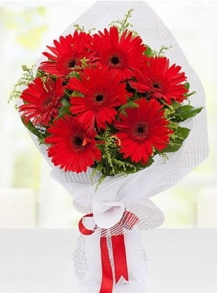 Kırmızı Gelbera Buketi  Bolu internetten çiçek siparişi