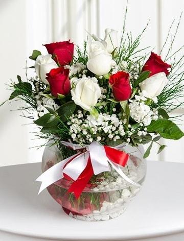 Aşk Küresi  5 beyaz 5 kırmızı gül fanusta  Bolu internetten çiçek satışı