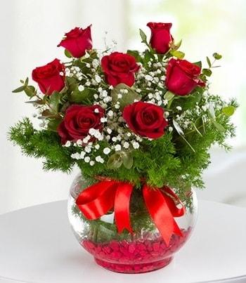 fanus Vazoda 7 Gül  Bolu çiçek , çiçekçi , çiçekçilik