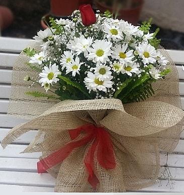Papatya 1 adet kırmızı gül buketi  Bolu çiçekçiler