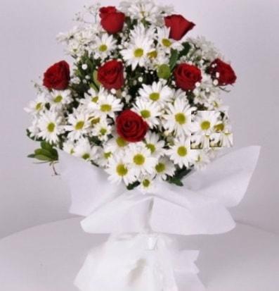 7 adet kırmızı gül ve papatyalar krizantem  Bolu internetten çiçek satışı