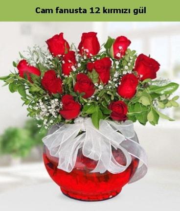 Cam içerisinde 12 adet kırmızı gül  Bolu internetten çiçek satışı