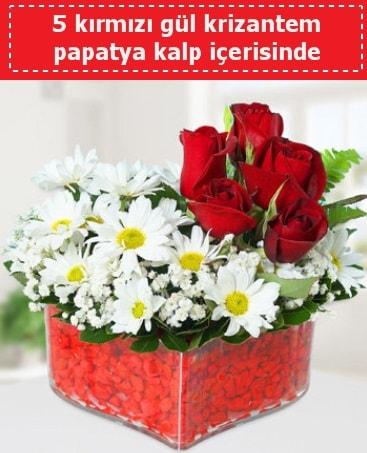 mika kalp içerisinde 5 kırmızı gül papatya  Bolu çiçek gönderme