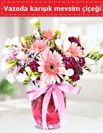Vazoda karışık mevsim çiçeği  Bolu çiçek , çiçekçi , çiçekçilik