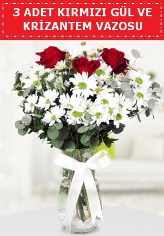 3 kırmızı gül ve camda krizantem çiçekleri  Bolu çiçek gönderme